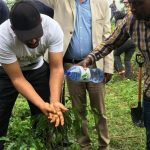 Ethiopia 'breaks' tree-planting record to tackle climate change